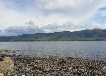 Anyone fancy a nature walk along the shoreline?
